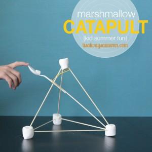 Marshmallow Catapult Activity