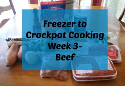 beef crockpot recipes ingredients list