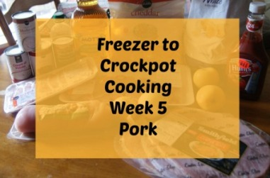 pork-slow-cooker-recipes
