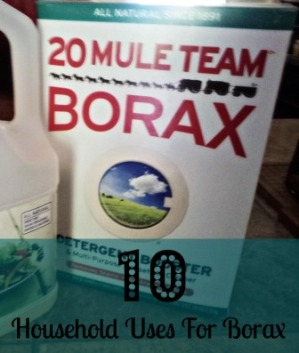 10 Household Uses For Borax