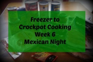 Freezer To Crockpot Cooking | Mexican Shopping List!