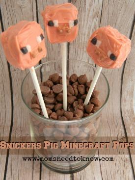 Minecraft Pig Pops