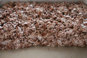 cocoa rice krispie treats recipe