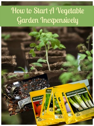 How to Start a Garden Inexpensively