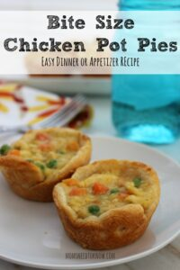 Bite Size Chicken Pot Pies for Parties or Dinner