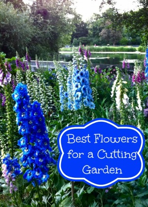 Grow the Best Flowers For a Cutting Garden Moms Need To