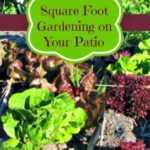 square foot gardening patio