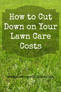 How To Cut Your Lawn Care Costs