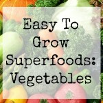 Easy To Grow Superfoods - Vegetables