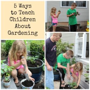 5 Ways to Teach Children About Gardening