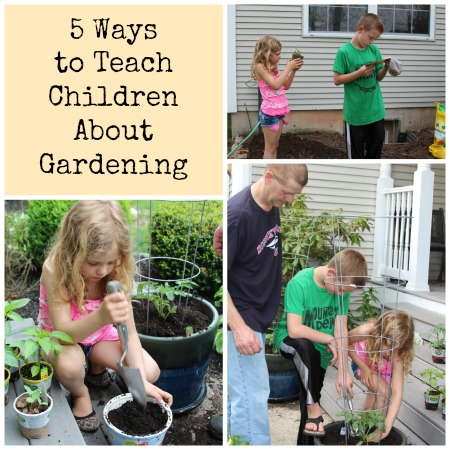Ways To Teach Children About Gardening