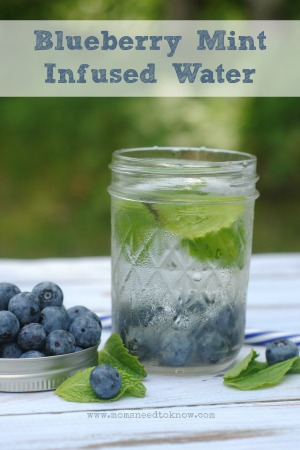 Blueberry Mint Infused Water