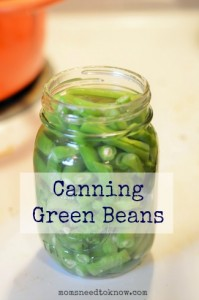 Green Beans are a great for people new to pressure canning!
