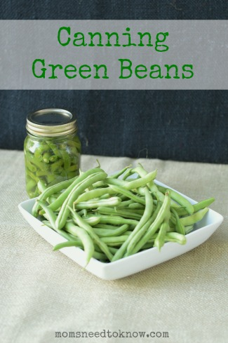 Canning Green Beans 2