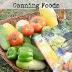 How To Get Started With Canning Foods  Canning 101