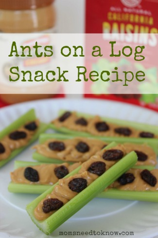 Ants on a Log Snack