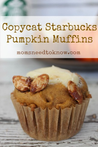 Copycat Starbucks Pumpkin Muffin Recipe