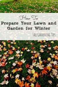 Don't forget to get your lawn ready for Fall and Winter. You really should start now!