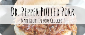 Slow Cooker BBQ Pork Recipes Crockpot Dr Pepper Pulled Pork