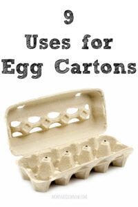 9 Uses For Egg Cartons