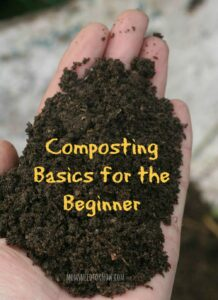 If you aren't yet composting, you should be! Here is how to get started!