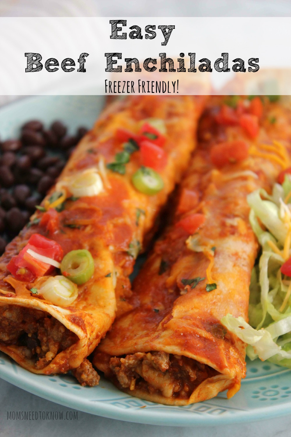 Easy Beef Enchiladas | Freezer Friendly Meal! | Moms Need To Know ™