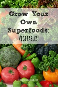 Easy To Grow Super Veggies | Grow Your Own Superfoods!
