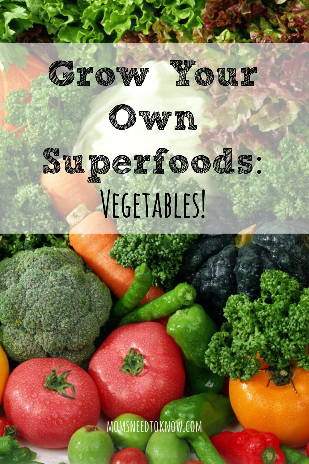 How To Grow Your Own Superfoods - Vegetables