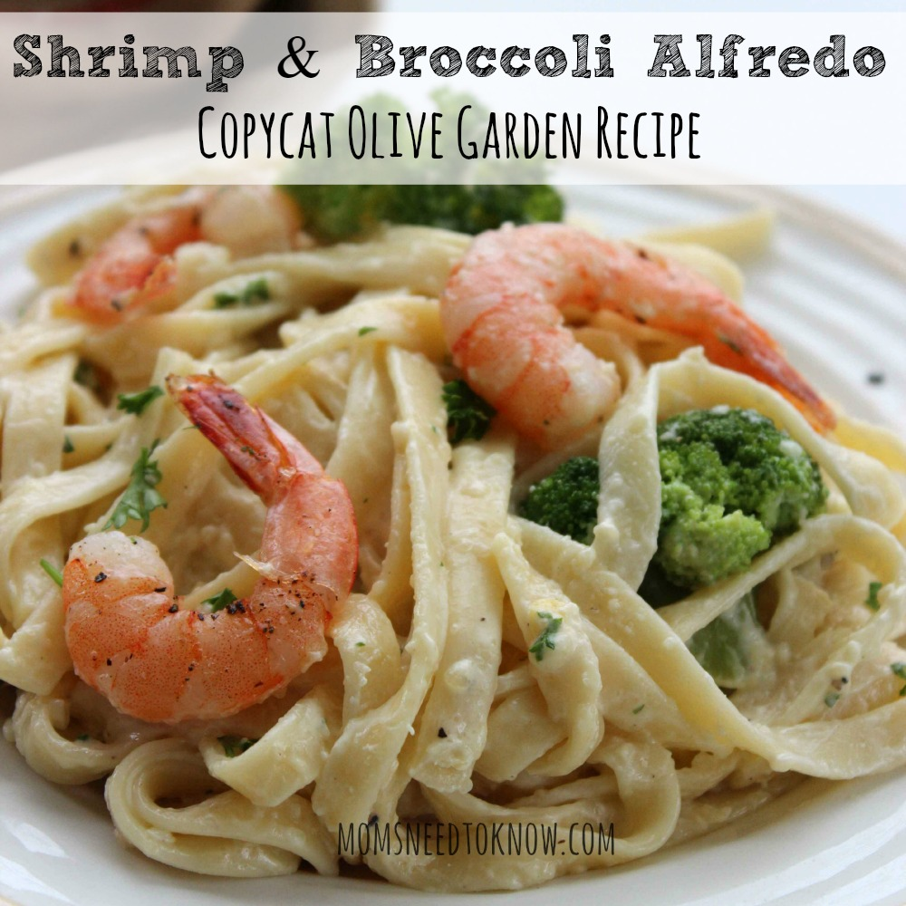 Copycat Olive Garden Shrimp and Broccoli Alfredo sq