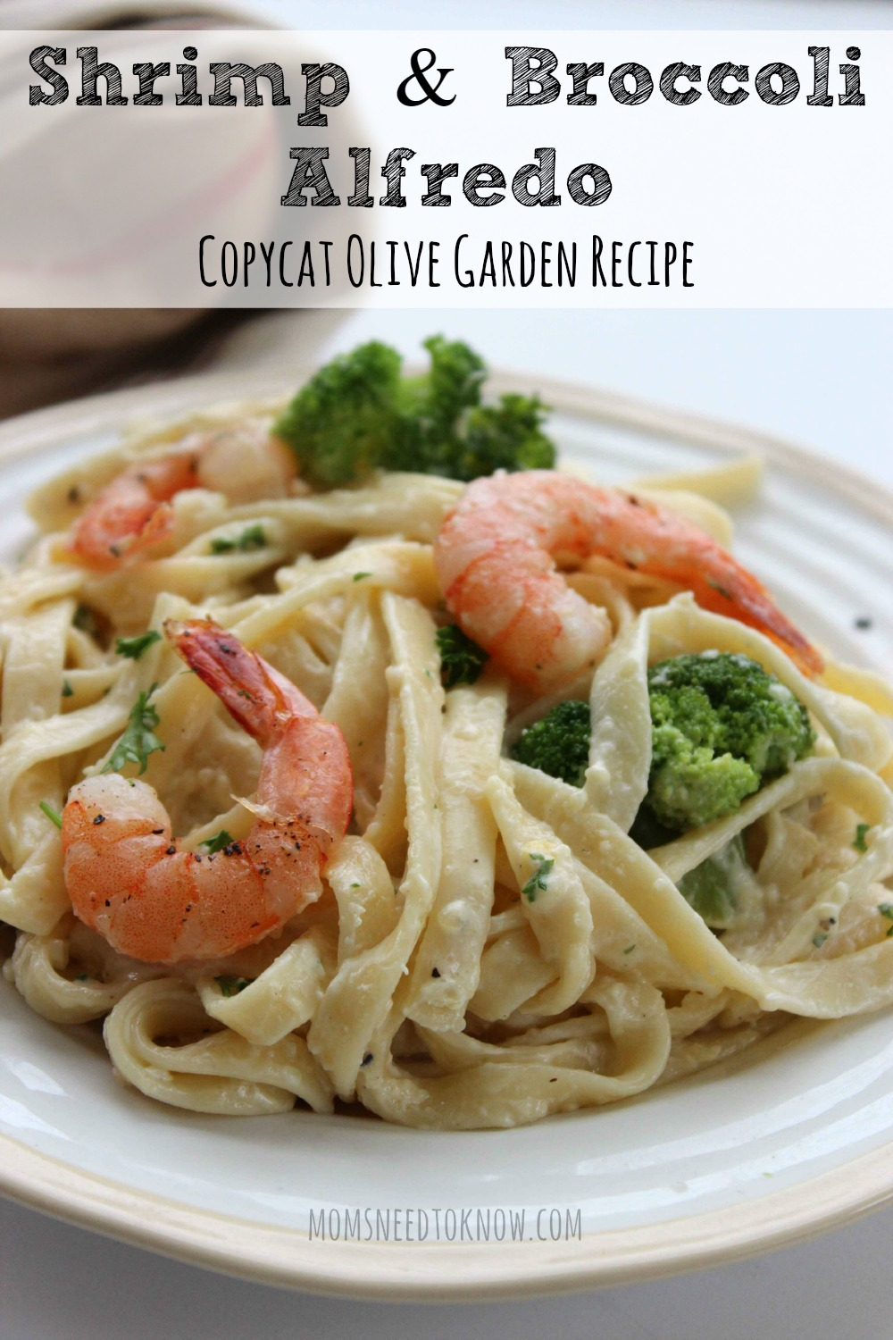 Copycat Olive Garden Shrimp and Broccoli Alfredo