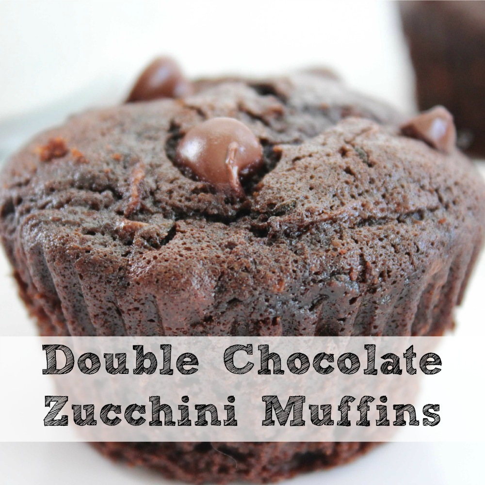 Double Chocolate Zucchini Muffins sq