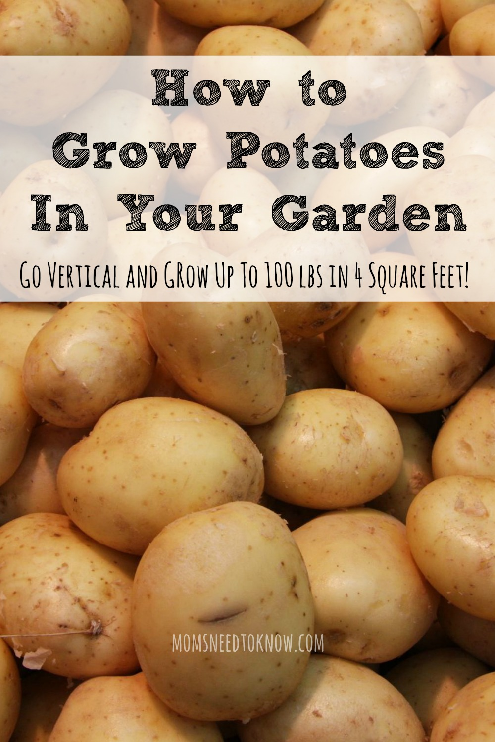 How To Grow Potatoes | Go Vertical For the Best Yield! | Moms Need ...