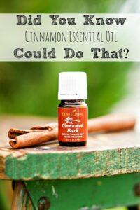The Many Uses of Cinnamon Essential Oil
