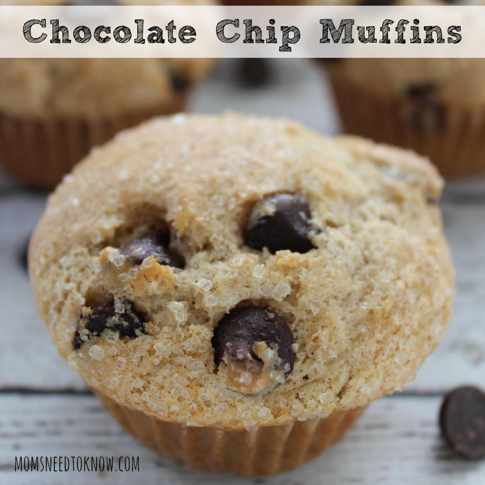 Chocolate Chip Muffins Recipe sq