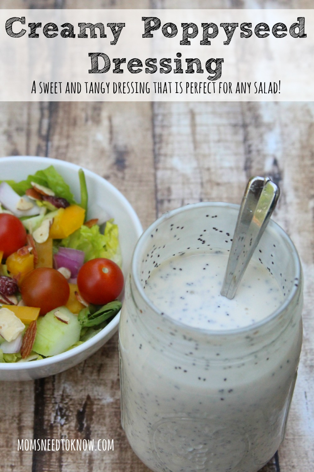 This creamy poppy seed dressing recipe is the perfect mix of tangy and sweet. I have yet to find a salad that doesn't taste better with this dressing!