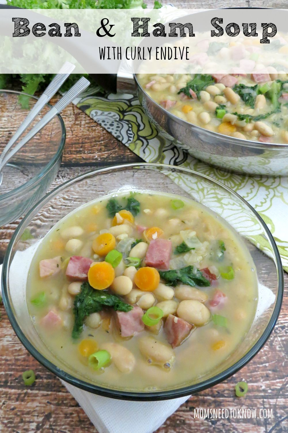 This ham and bean soup recipe gets an extra paunch of flavor with the addition of some curly endive . Pair it with a crusty bread for a complete meal!