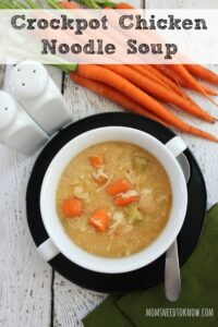 Crockpot Chicken Noodle Soup Recipe | Great Freezer Recipe!