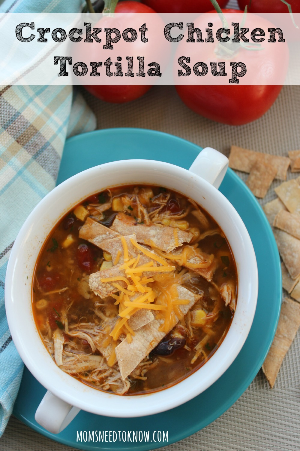 If you are looking for some easy chicken recipes, you need to try my crockpot chicken tortilla soup as well as a few others that I have listed!