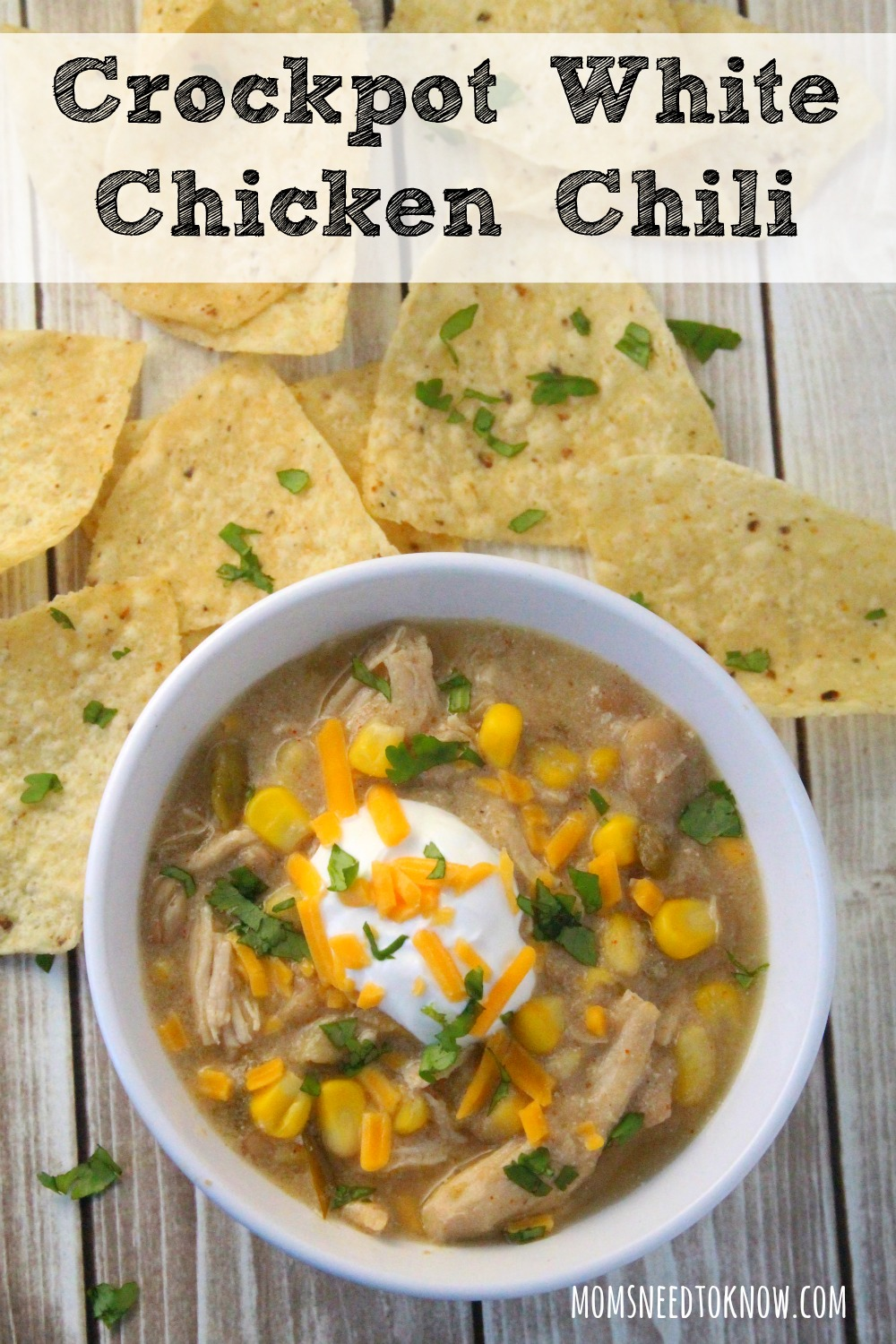This white bean chicken chili cooks up in your slow cooker and is so delicious! It's the perfect change from your regular chili or soups!