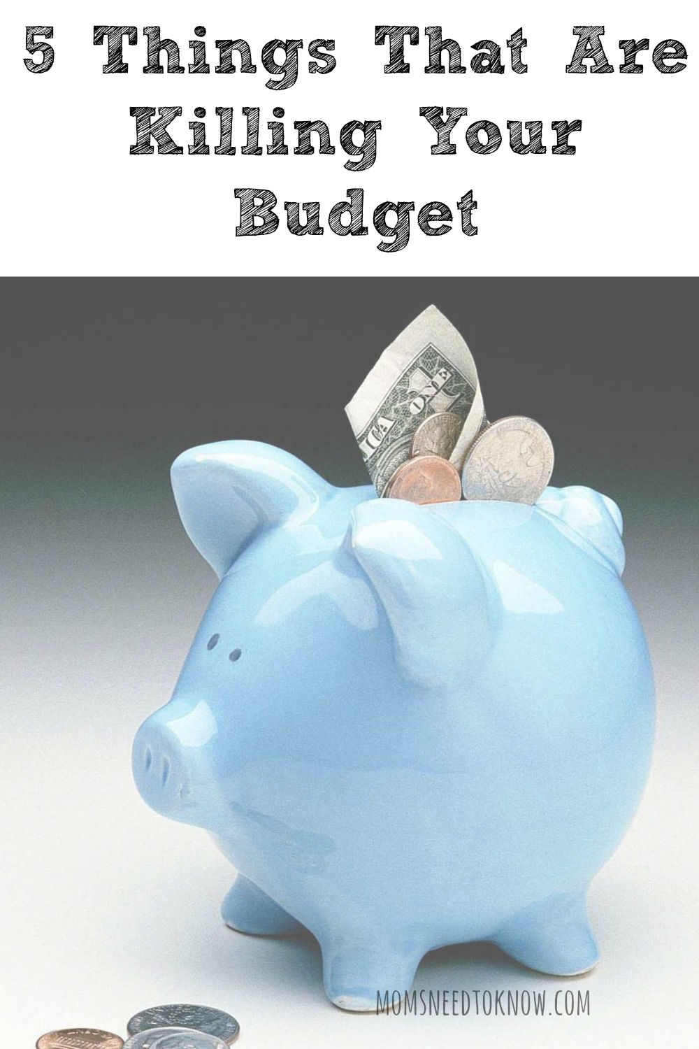 5 Things That Are Killing Your Budget