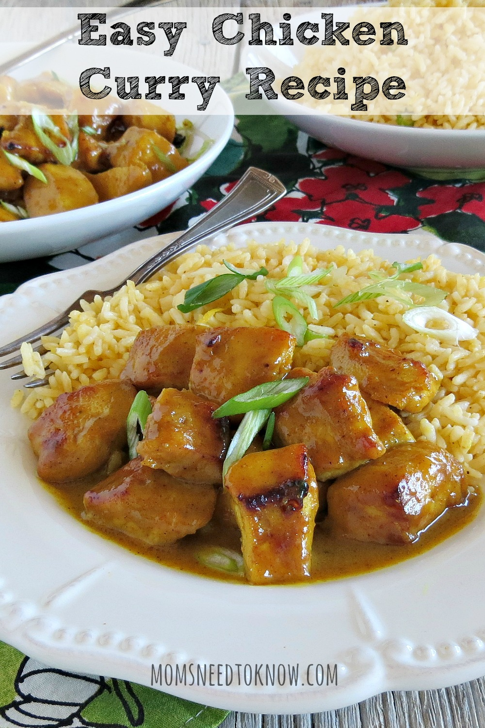 This chicken curry recipe does double-duty as a main meal (served over rice) you can stick some toothpicks in the pieces and serve as hors d'oeuvres!