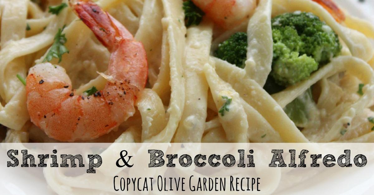 Shrimp Fettuccine Alfredo Olive Garden Recipe
