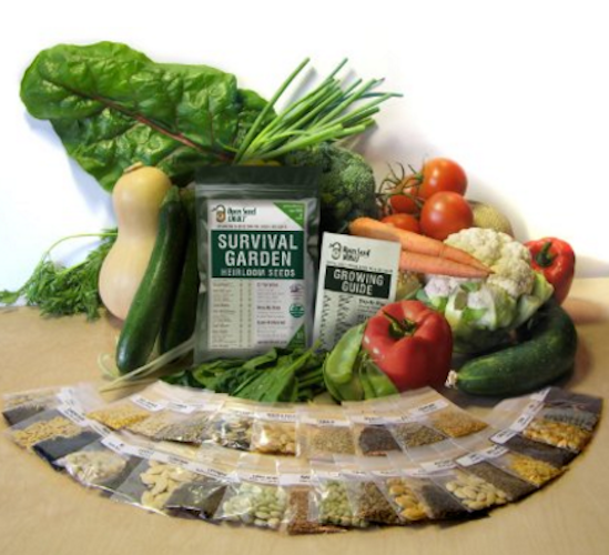 15,000 Non GMO Heirloom Vegetable Seeds