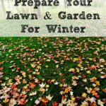 With the weather getting cooler, it's time to prepare your lawn for winter. Just a little work will help ensure that you have a healthy lawn in the spring