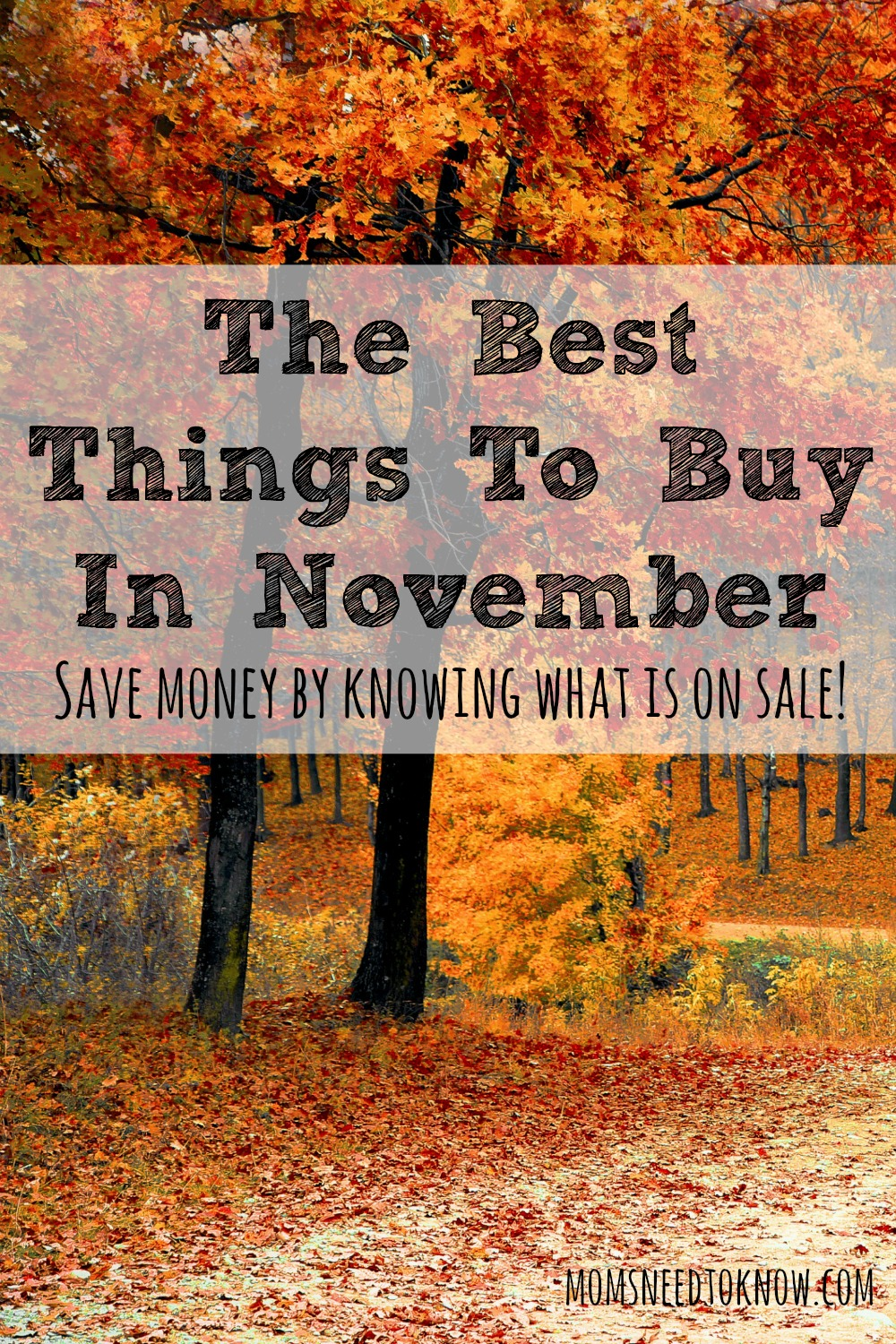 Knowing what the best things to buy in November are can save you a bunch of money. Stock up when these items are at their least expensive!