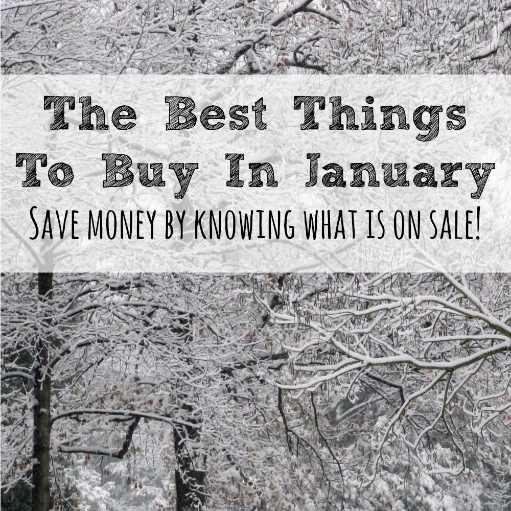 Saving money can be all about timing and January always has better deal on some things than others. Here are the best things to buy in January!