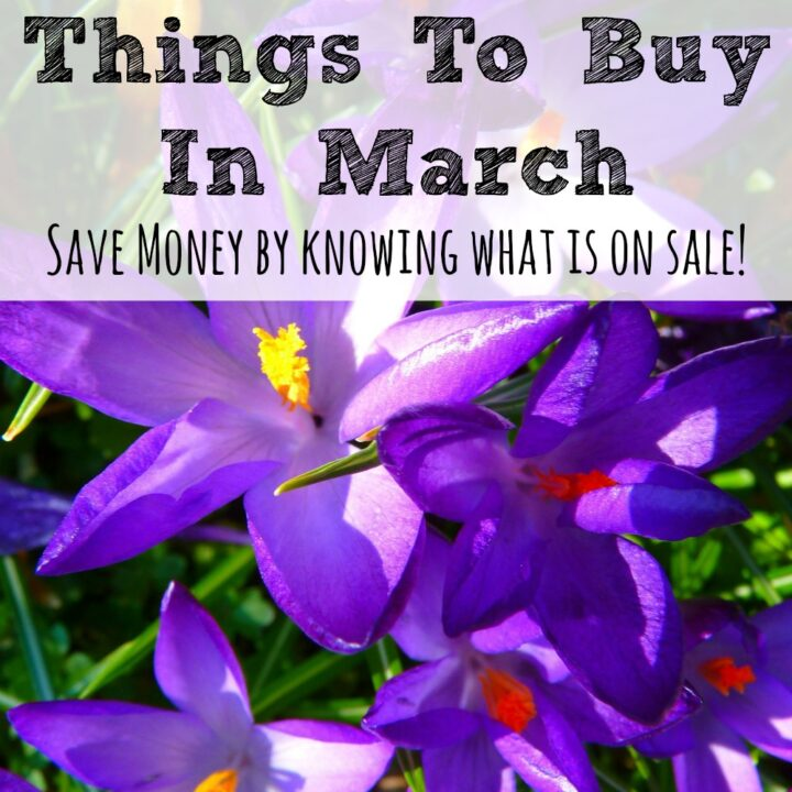 Saving money can be all about timing and March always has better deals on some things than others. Here are the best things to buy in March!